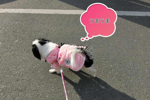 20130223(8).png