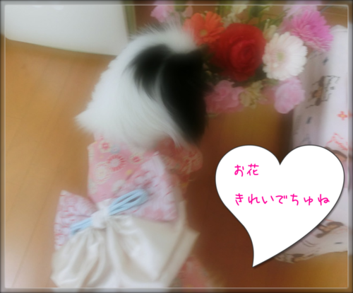 20130303(3).png