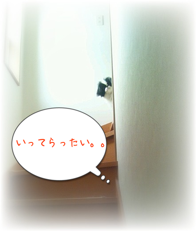 20130315(1).png