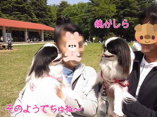 20130428_21.png