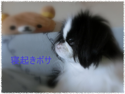 20130925(14.png