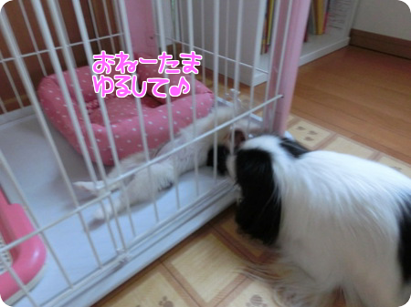 20130926f.png