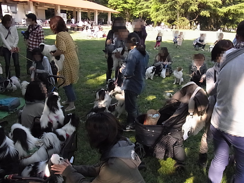 20130429(20).png