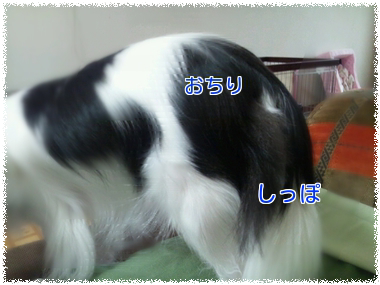 20130916.png